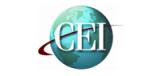 CEI  институт предпринимательства